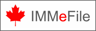 The IMMeFile